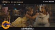 电影《一条狗的使命2》释出终极预告,小狗贝利陪伴小女孩成长