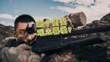 戰狼2與紅海行動,同為軍事動作片,誰更受觀眾喜愛?